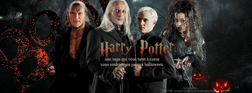 Harry Potter une saga qui vous tient a coeur by N0xentra