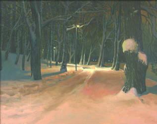 Winter night by kahuella