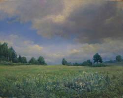 Field by kahuella