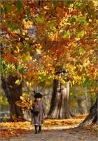 Autumn in park by fotouczniak