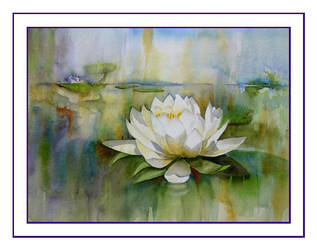 Water Lily No. 2 by baglady