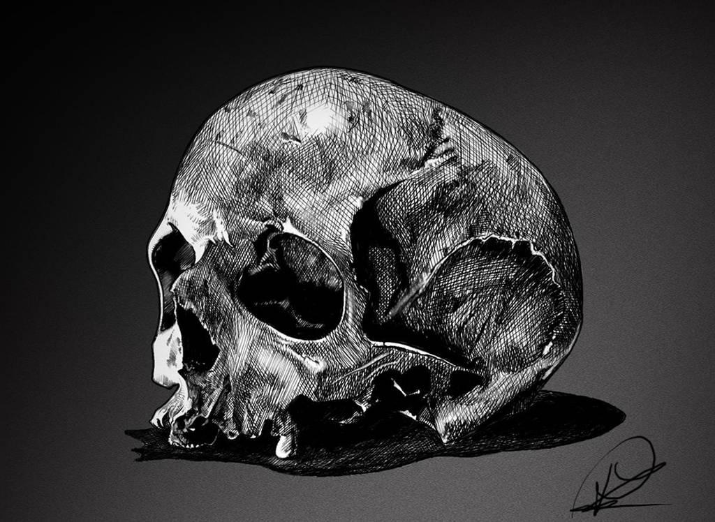 skull by PaulDarkdraft