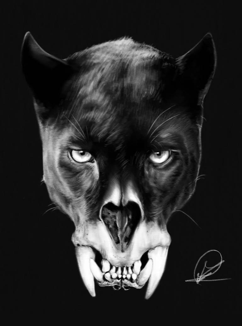 Panther by PaulDarkdraft