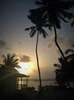 Tobacco Caye, Belize Sunrise by atreyu917