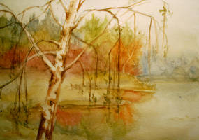 Birch by Ziggster