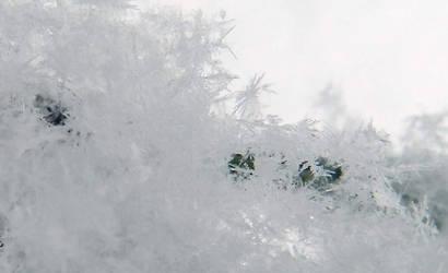 Snowflakes 2 by kbcollins
