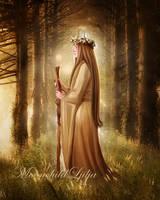 Magic Forest by moonchild-ljilja