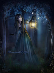 Night Dragonflies by moonchild-ljilja