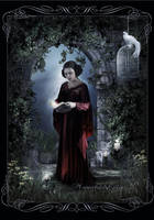 Garden in the Night by moonchild-ljilja
