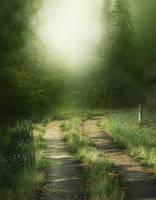 Misty Path background by moonchild-ljilja
