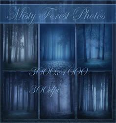 Misty Forest Photos Stock by moonchild-ljilja