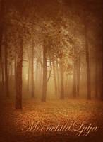 Foggy Wood by moonchild-ljilja