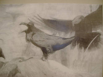 THE BIRDS by tsubasa-holic