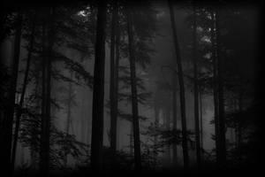 through the mist of eternity by ArkanumTenebrae