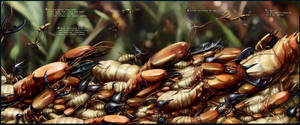 Salsa Invertebraxa - Termites go to war by m0zch0ps