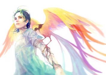 Bird of paradise by dorset