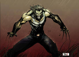 wolverine colored by nefar007