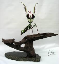 Giant Devil's Flower Mantis by BlackHoleInAJar