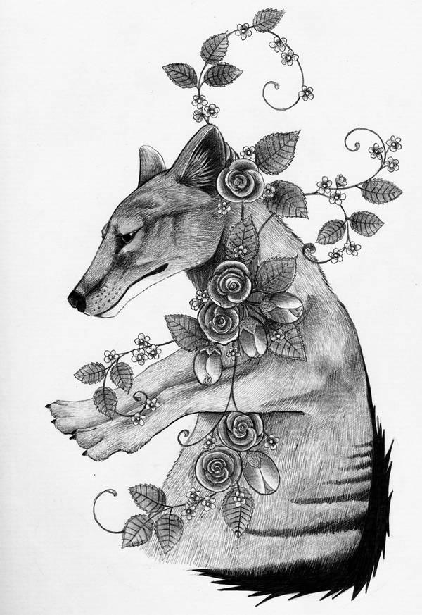 Thylacine by Ravenari