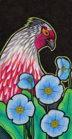 Blood Pheasant and Blue Poppies by Ravenari