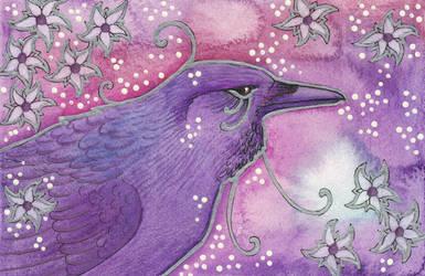 Violet Series - 04. Raven by Ravenari