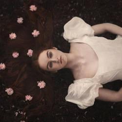 Beneath the Cherry Tree by parvanaphotography