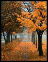beautiful autumn by nikel303