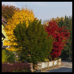 The Colours of Autumn 1 by Bubba77