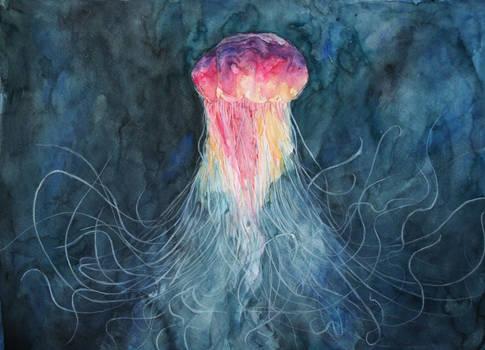 Jellyfish II by lenischoen