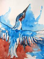 River Kingfisher by lenischoen