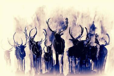 Deers by lenischoen