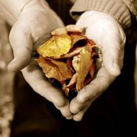 Love Autumn by digitalTouch