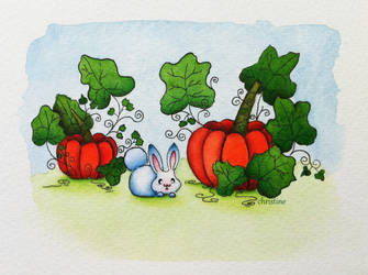 Pumpkin field by ChristineDim