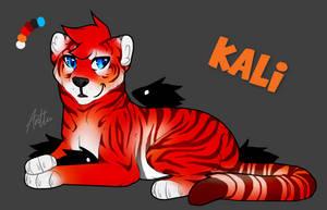 Kali Reference by UkeAnttu