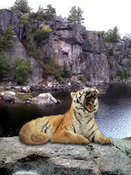 Loch Ness Tiger - Attempt 1 by Arielsparky