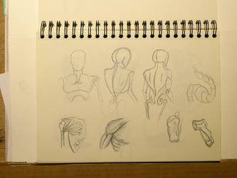 Doodles Studies Sketches09 by CiNiTriQs