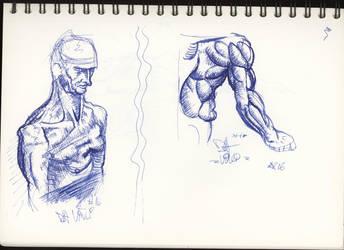 Sketches Studies Da Vinci 2 by CiNiTriQs