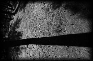 In summer veins shadows flow by Varanas