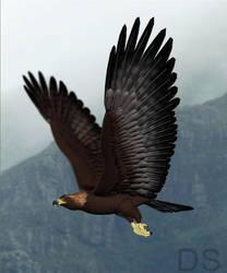 Eagle Flight by DarkSap