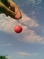 Cherry in the sky by Kira--Raito