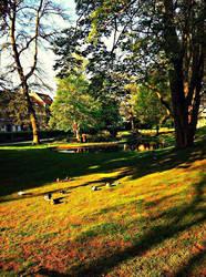 Park by LunaPura