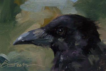 Raven Portrait by JoeyBee60
