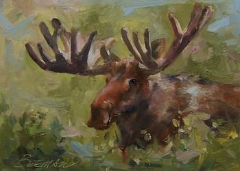Bull Moose by JoeyBee60