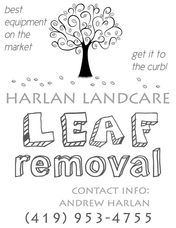 leaf removal flyer design by pilas14