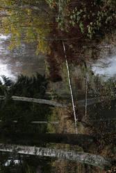 Pond  001 by neverFading-stock