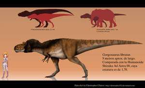 Gorgosaurus libratus by Christopher252
