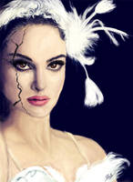 Black Swan by fishglow