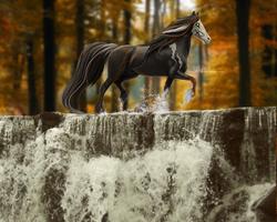 Autumn Splash by ellipsiem