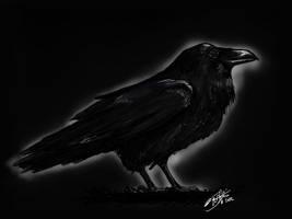 Raven by KnifeInToaster