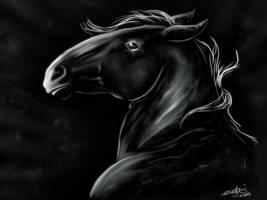 Black n white by KnifeInToaster